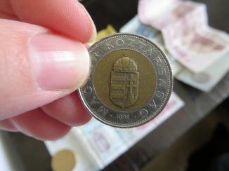 Hungarian coin 100