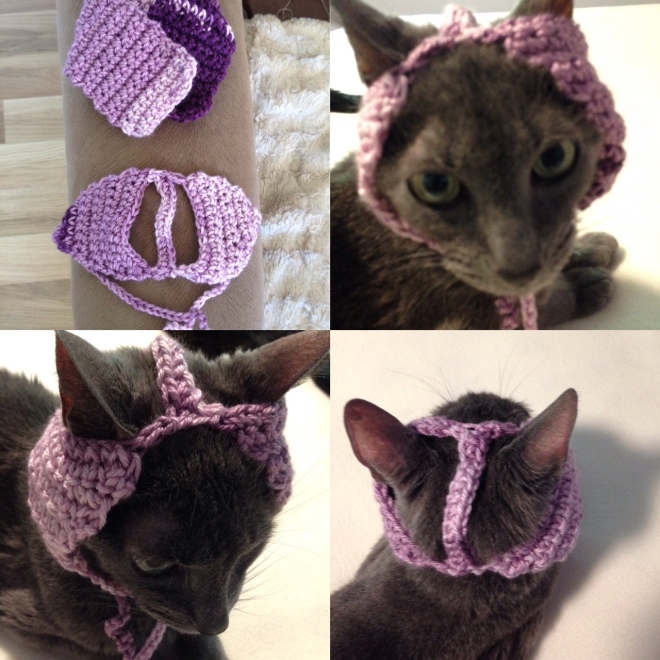 cat crocheted hat