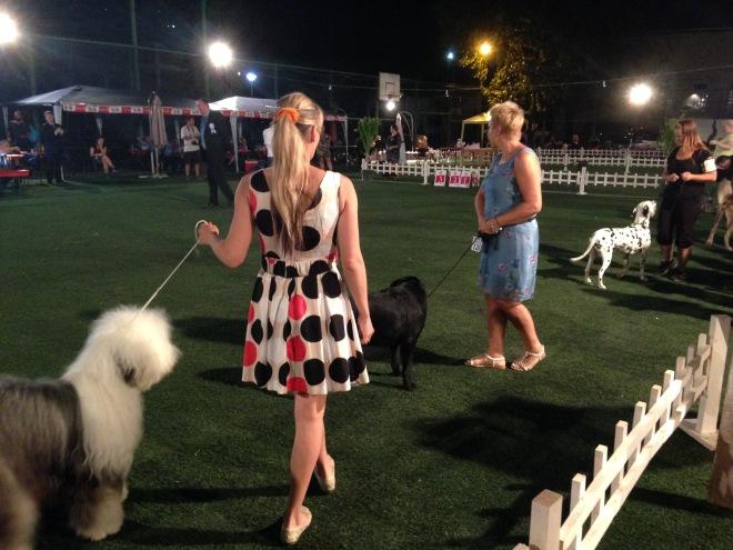 Peja Kosovo dog show.JPG