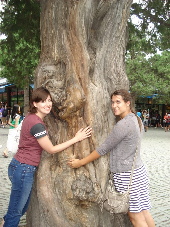 Tree hugging for an extra year of life.jpg