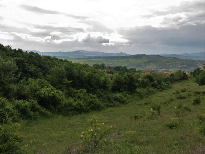 hill 4
