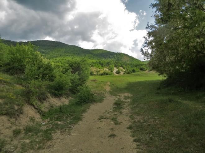hill 7